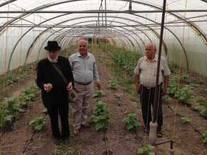 Fr Dale, Mochtar Zacharia and the Mayor ProTem in the Greenhouse